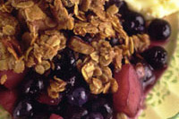 Blueberry and apple crisp